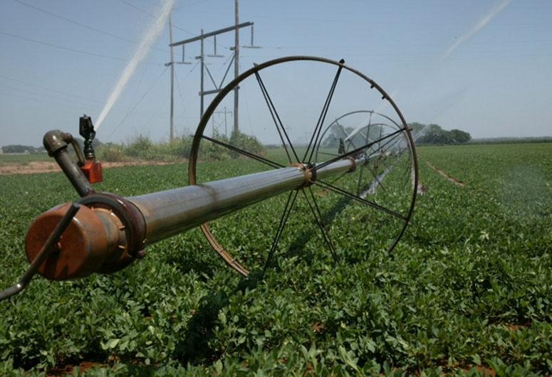 oklahoma farm report