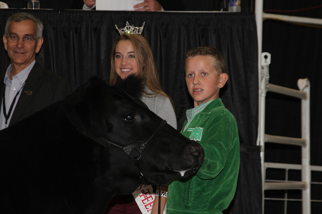 six young people from six states sold six champion and reserve